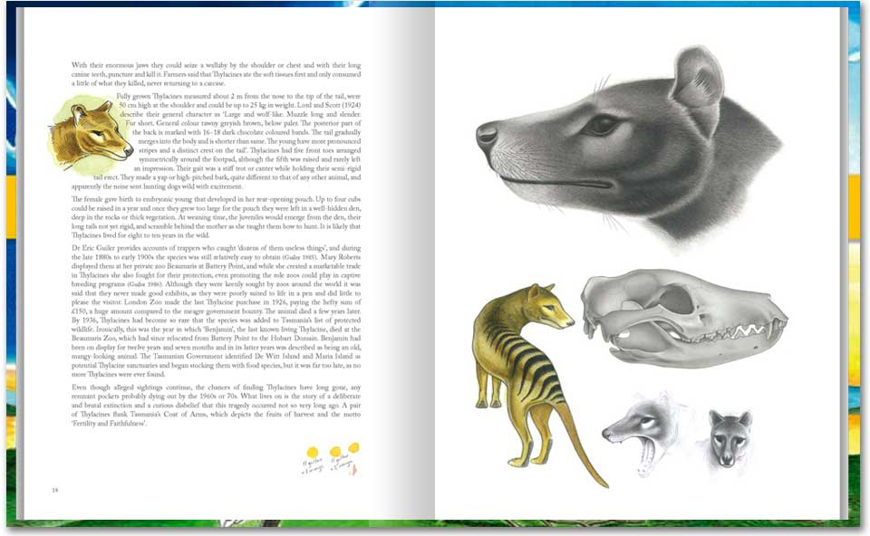Thylacine pages from Animals of Tasmania.