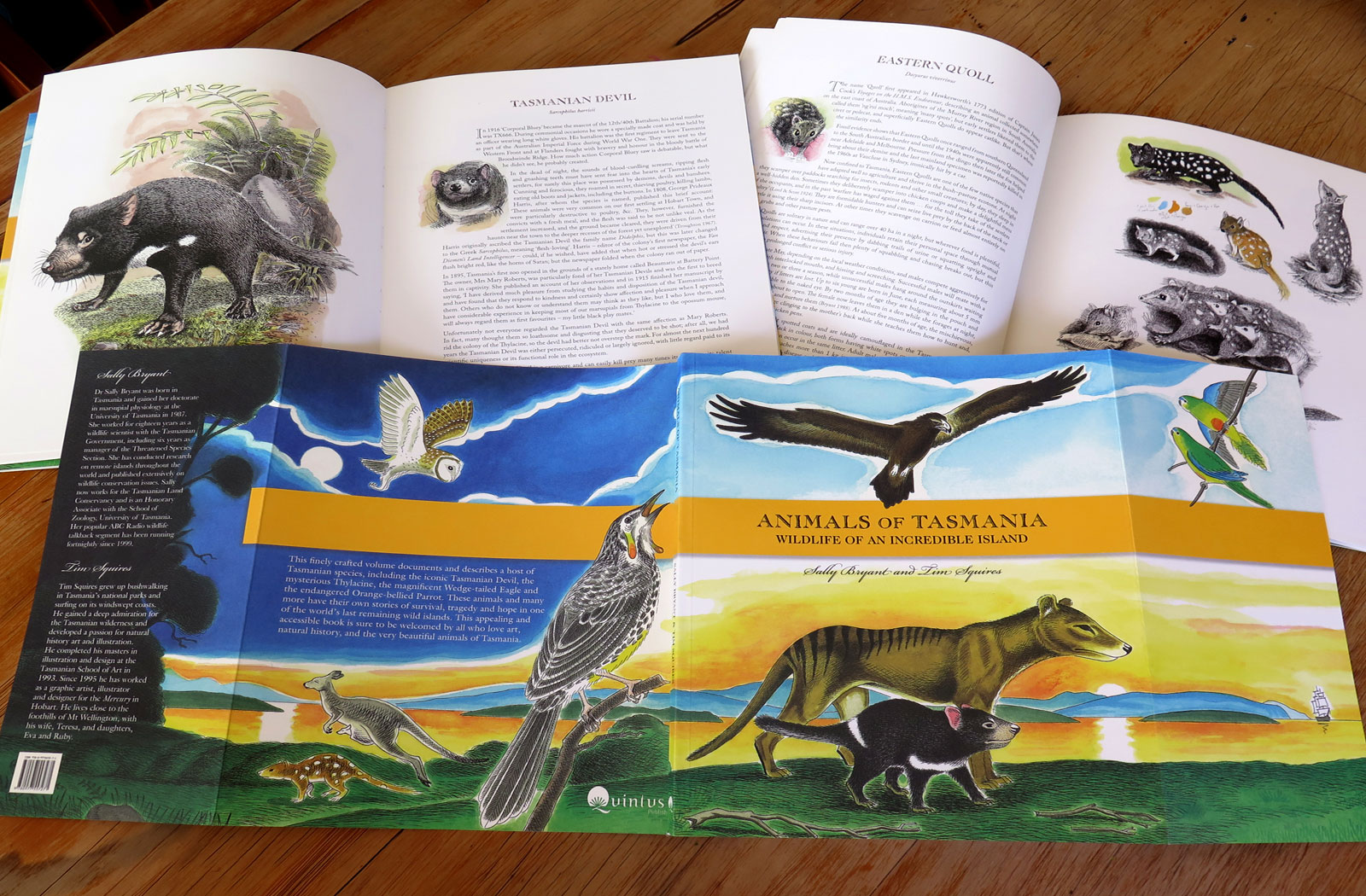 Animals of Tasmania by Sally Bryant and Tim Squires